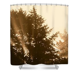 Sunrise In Sepia Shower Curtain