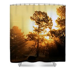 Sunrise Shower Curtain by Karen Harrison