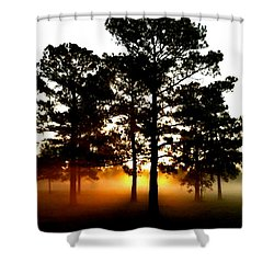 Sunrise3 Shower Curtain by Amber Stubbs