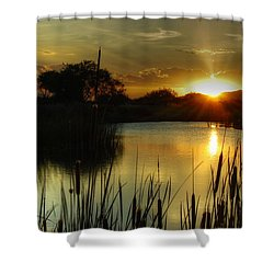 Sunset And Cattails Shower Curtain by Tam Ryan