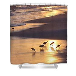 Shower Curtain featuring the photograph Sunset Beach by Nava Thompson