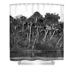 Sunset Black And White Shower Curtain by Rich Franco