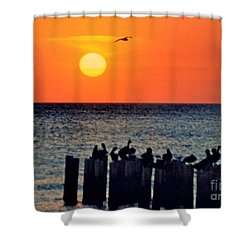 Shower Curtain featuring the photograph Sunset In Florida by Lydia Holly