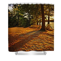 Sunset In Woods At Lake Shore Shower Curtain by Elena Elisseeva