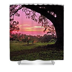 Sunset On The Bench Shower Curtain by Michael Thomas