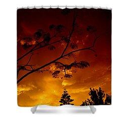 Sunset Over Florida Shower Curtain