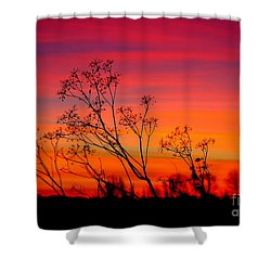 Sunset Silhouette Shower Curtain by Patrick Witz