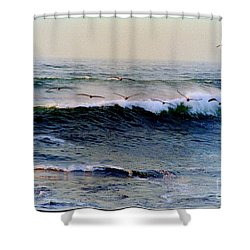 Shower Curtain featuring the photograph Sunset Watch  by Kathy Bassett