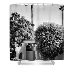 Suntan Lane Palm Springs Shower Curtain by William Dey