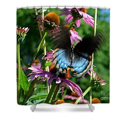 Swallowtail In Motion Shower Curtain