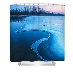 Swan Shower Curtain by Davorin Mance
