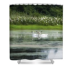Swan Pond Shower Curtain by Bill Cannon