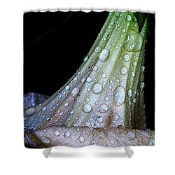 Sweet And Rainy Shower Curtain by Chris Berry
