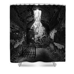 Sweet Deams Shower Curtain by Andrew Paranavitana