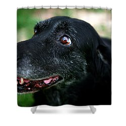 Shower Curtain featuring the photograph Sweet Mariah by Lon Casler Bixby