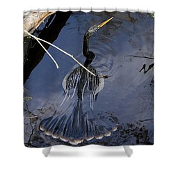Swimming Bird Shower Curtain by David Lee Thompson