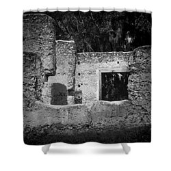 Tabby Ruins Shower Curtain by Lynn Palmer