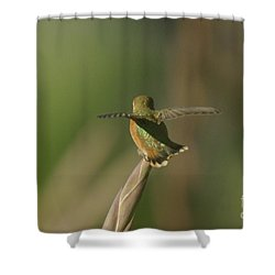 Take Off  Shower Curtain by Jeff Swan