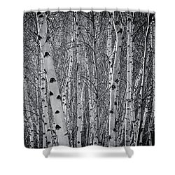 Tate Modern Trees Shower Curtain