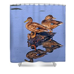 Tattle Tale Shower Curtain