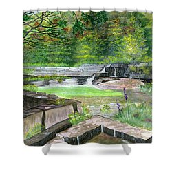 Shower Curtain featuring the painting Taughannock Vista Ithaca New York by Melly Terpening