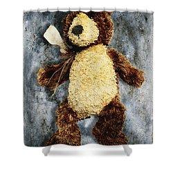 Teddy Bear Shower Curtain by Skip Nall
