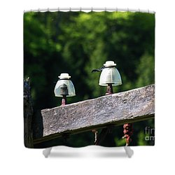 Shower Curtain featuring the photograph Telephone Pole And Insulators by Sherman Perry