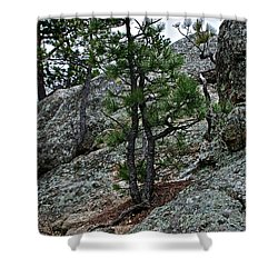 Tenacious Shower Curtain by Susan Herber
