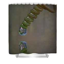 Tendril Droplet  Shower Curtain by Kym Clarke