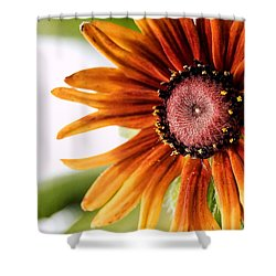 Tequila Sunrise Shower Curtain by Susan Smith