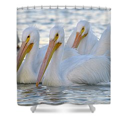 The 3 Amigos Shower Curtain