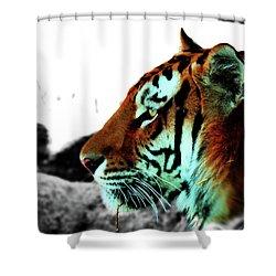 The Alpha Shower Curtain