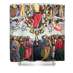 The Ascension Of Christ Shower Curtain by Pietro Perugino