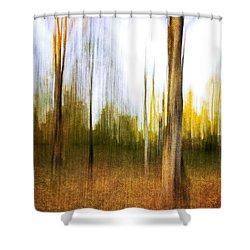 The Backyard Shower Curtain by Scott Pellegrin