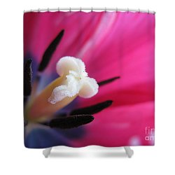 The Beauty From Inside Shower Curtain by Ausra Huntington nee Paulauskaite