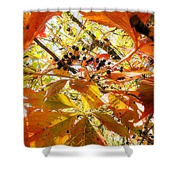 The Beauty In Dying Shower Curtain by Trish Hale
