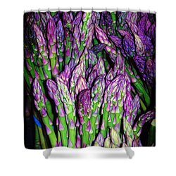 The Beauty Of Asparagus Shower Curtain by Judi Bagwell