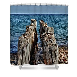 Shower Curtain featuring the photograph The Bones Of Superior by Rachel Cohen