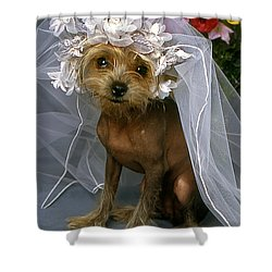 The Bride Is A Real Dog Shower Curtain