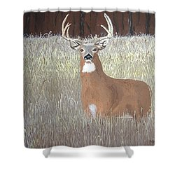 Shower Curtain featuring the painting The Buck Stops Here by Norm Starks