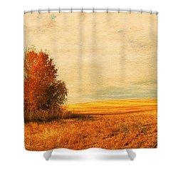 The Careful Breeze  Shower Curtain by Jerry Cordeiro