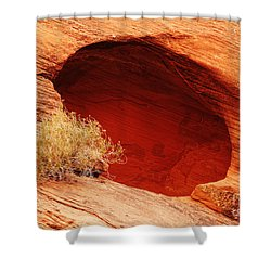 The Cave Shower Curtain by Vivian Christopher