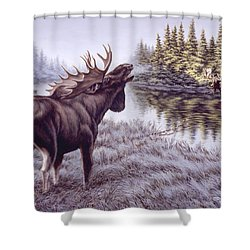 The Challenge Shower Curtain by Richard De Wolfe