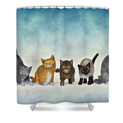 The Cute Ones Shower Curtain by Jutta Maria Pusl
