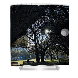 The Day's Reflection Limited Edition Bodecoarts Shower Curtain
