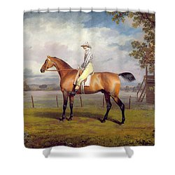 The Duke Of Hamilton's Disguise With Jockey Up Shower Curtain by George Garrard