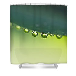 Shower Curtain featuring the photograph The Edge I by Priya Ghose