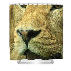 The Face Of God Shower Curtain
