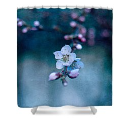 Shower Curtain featuring the photograph The First by Laura Melis