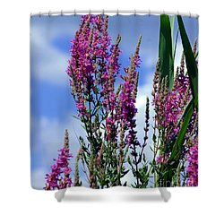 The Flowers Praise Him Shower Curtain by Kathleen Struckle